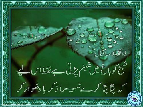 allama-iqbal-poetry-1024x768