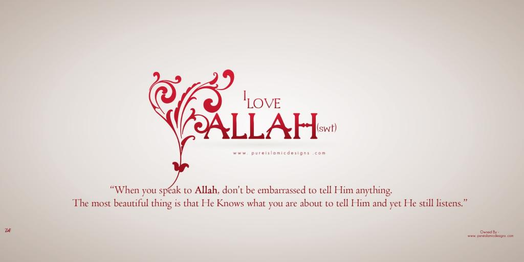i love allah Allah quotes - 1 when i was alone and had nothing i asked for a friend to help me bear the pain no one came except allah read more quotes and sayings about allah.