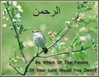 Favours Of LORD..