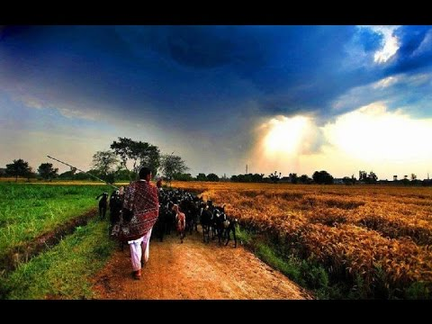 The Unexplored Rural Beauty of Pakistan